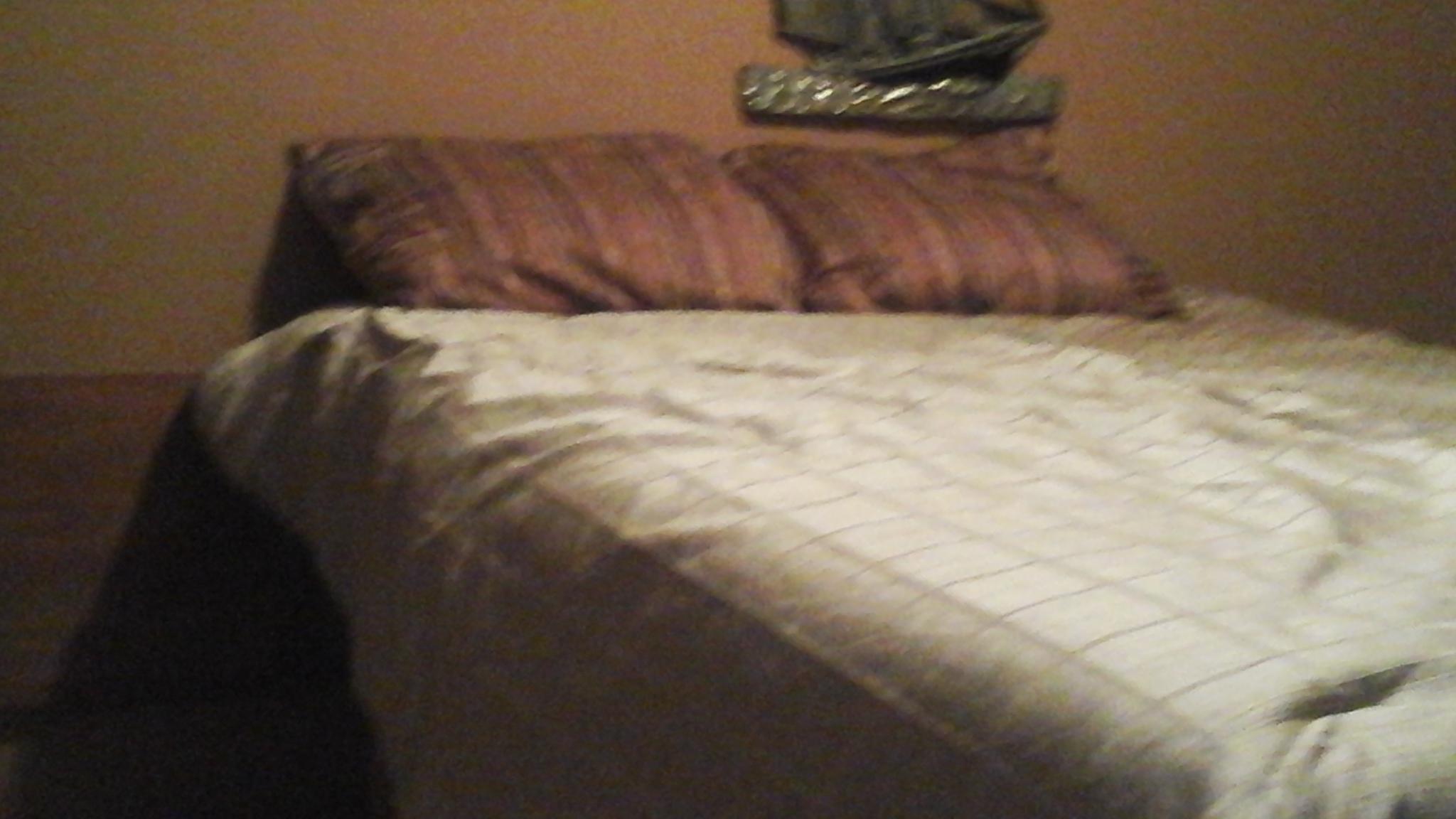Bedroom #4 Downstairs